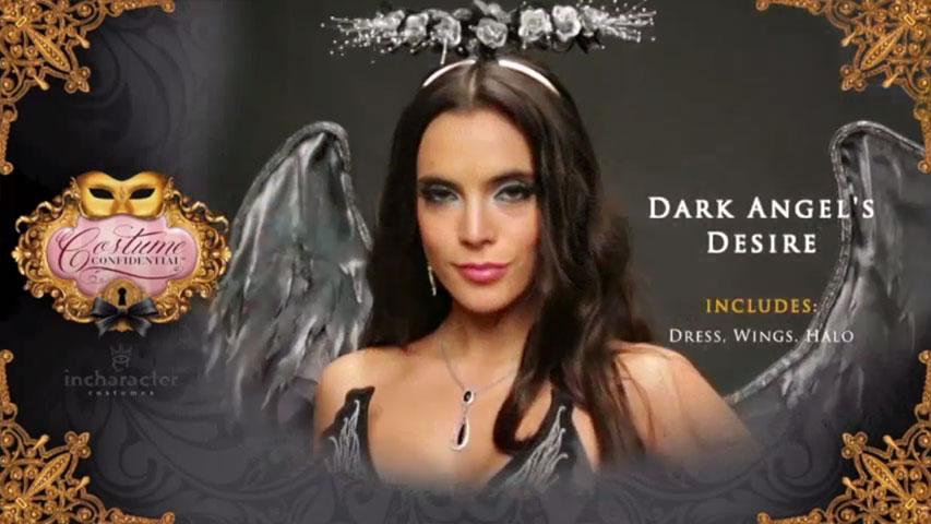 Adult Dark Angel's Desire Costume