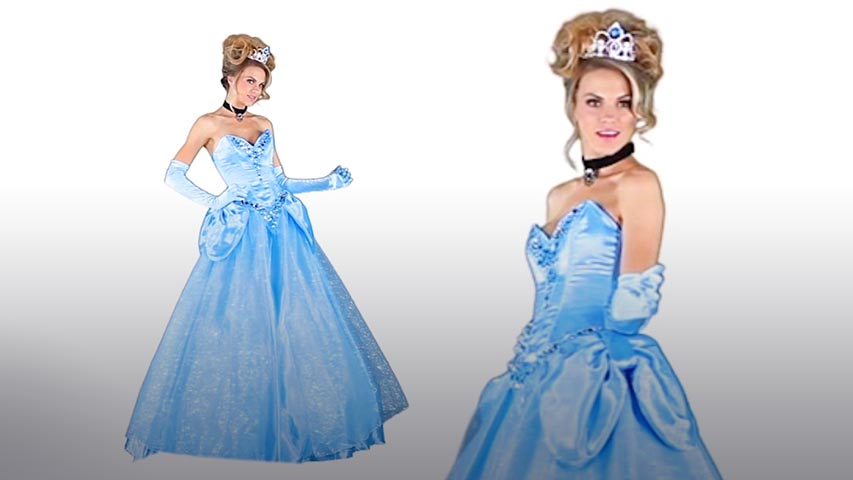 Womens Disney Deluxe Cinderella Costume